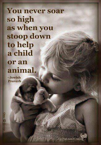 You never soar so high as when you stoop down to help a child or an animal