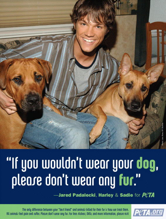 Jared Padalecki for PETA