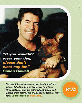 Simon Cowell for PETA